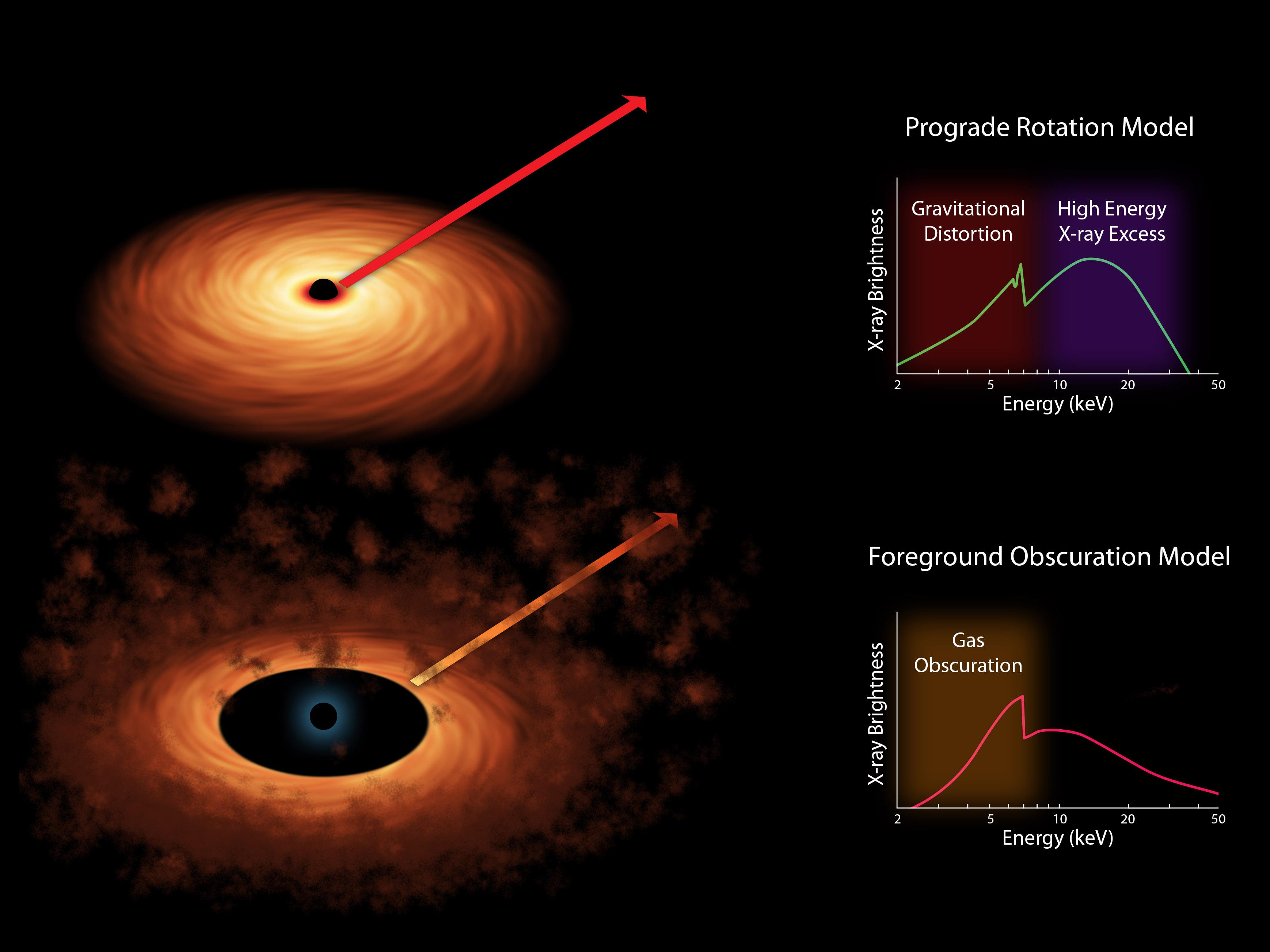 NASA - Two Models of Black Hole Spin