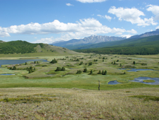 landscape near the Altai Mountains in Russia