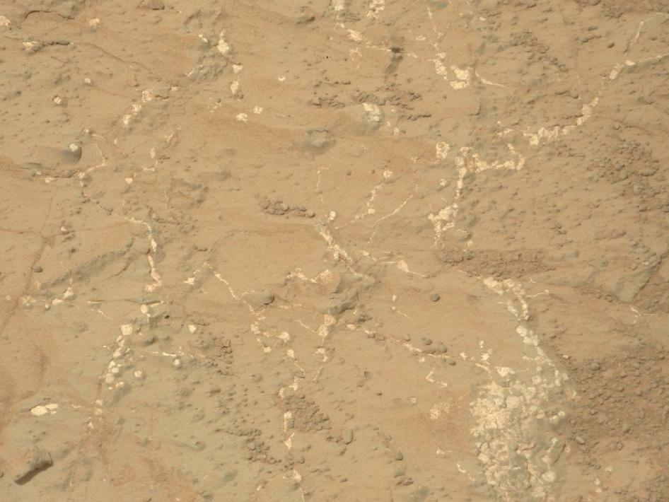 Light-toned nodules and veins are visible in this image from NASA's Mars rover Curiosity of a patch of sedimentary rock called 'Knorr.'