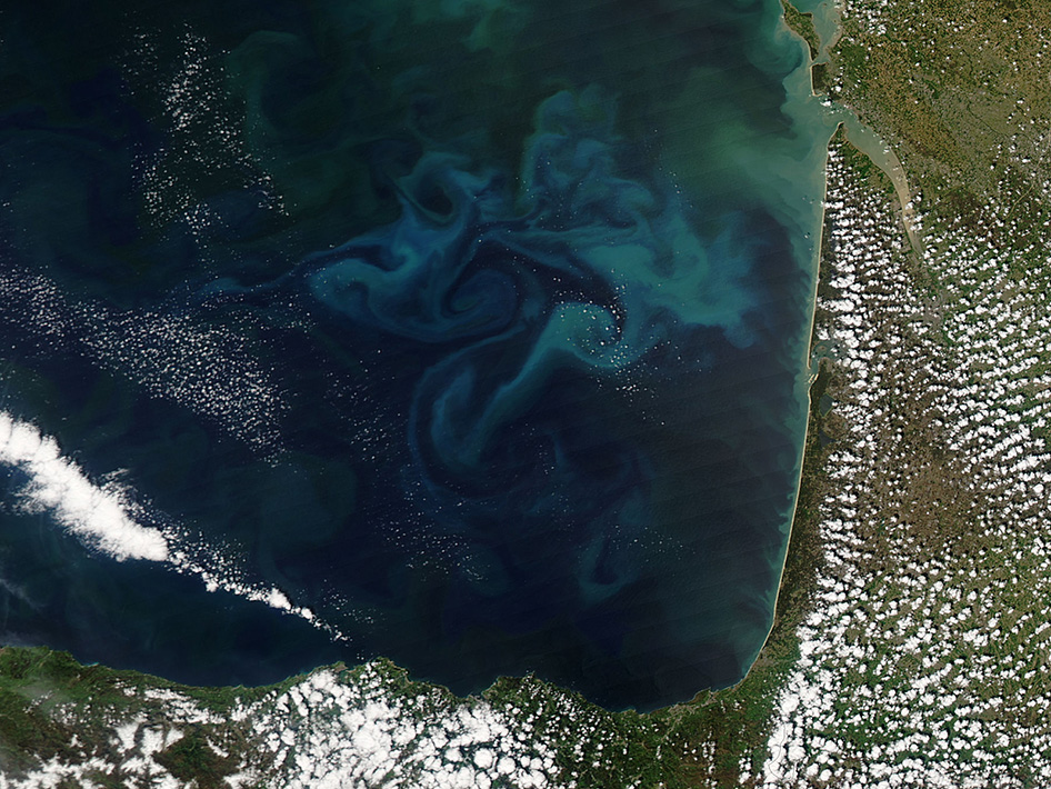 On April 20, 2013, the Moderate Resolution Imaging Spectroradiometer (MODIS) aboard NASA's Aqua satellite captured this true-color image of the dynamic growth of a springtime phytoplankton bloom in the Bay of Biscay. Image Credit: NASA GSFC