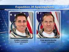 Expedition 35 Spacewalkers