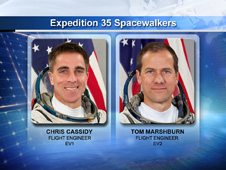 Expedition 35 Flight Engineers Chris Cassidy and Tom Marshburn