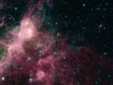 In what may look to some like an undersea image of coral and seaweed, a new image from NASA's Spitzer Space Telescope is showing the birth and death of stars