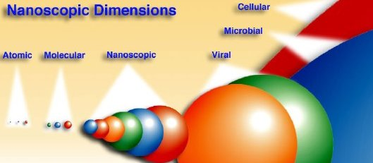 Nanoparticles are larger than typical molecules but smaller than viruses.