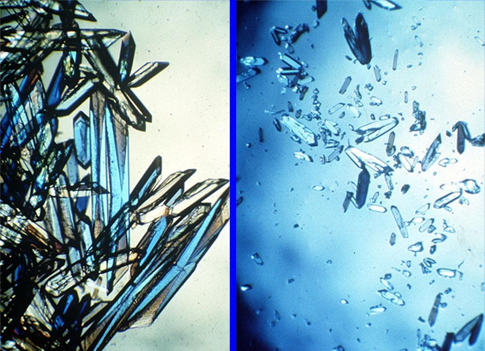 nasa - commercial protein crystal growth