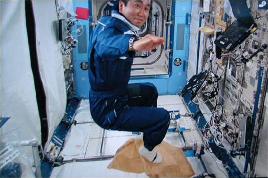 NASA - Try Zero-Gravity
