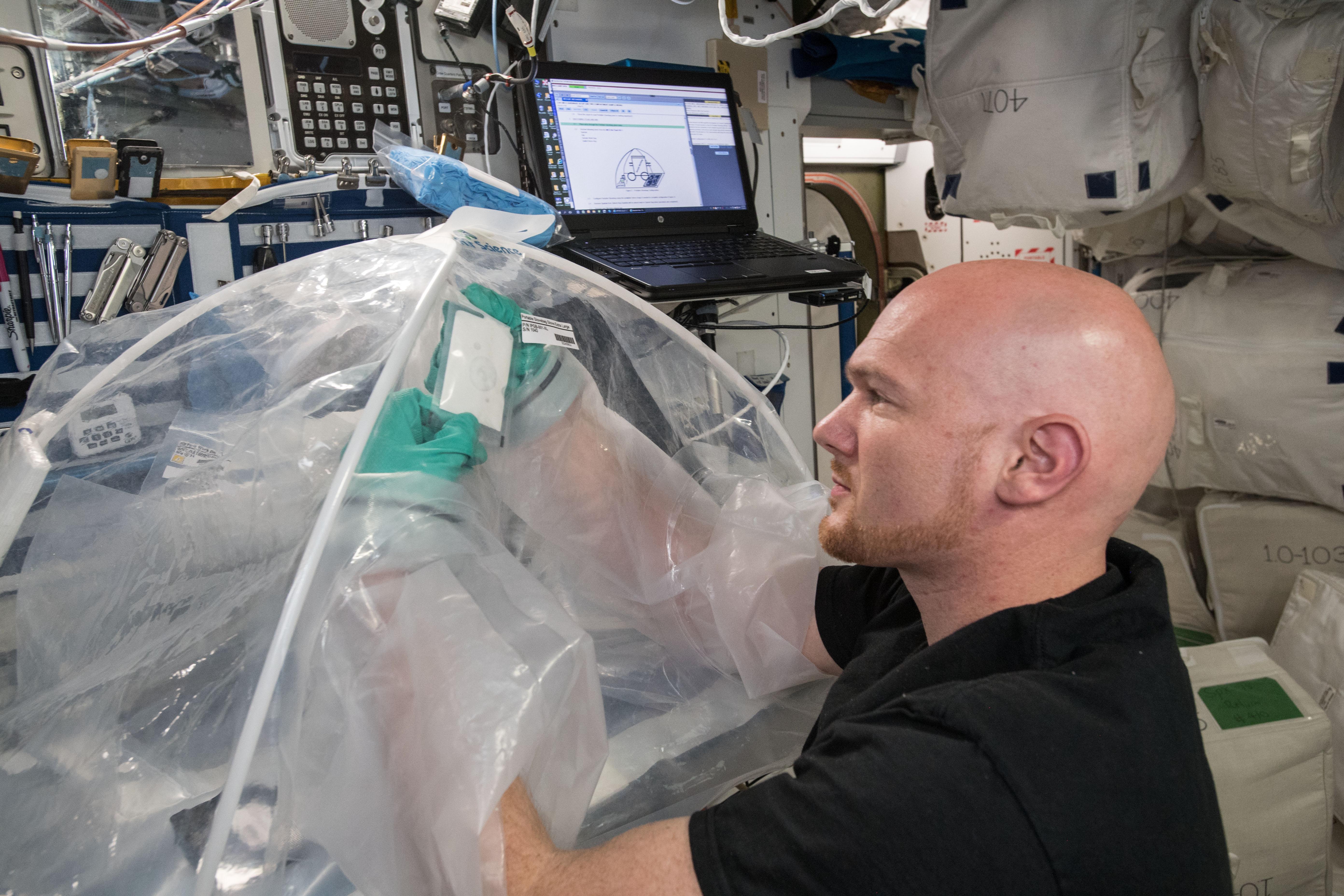 NASA experiments on seals in zero gravity
