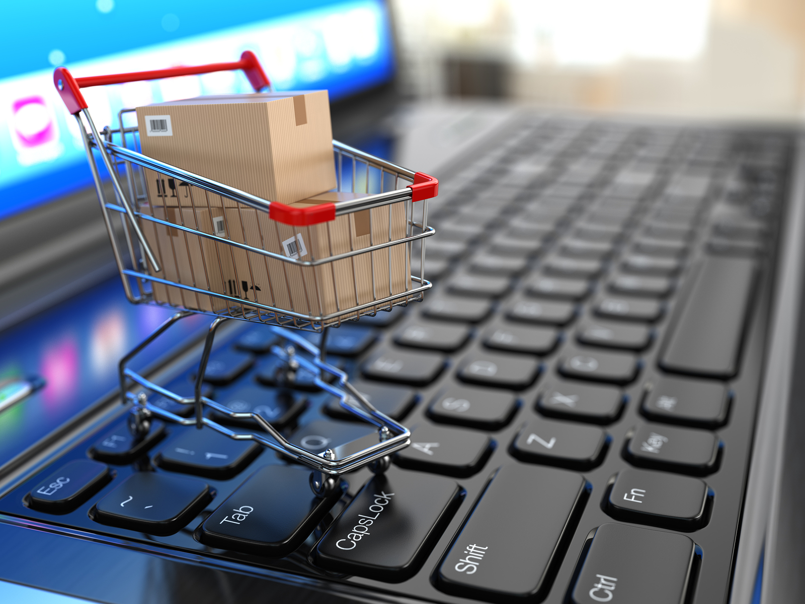 shopping cart technology in e-commerce pdf