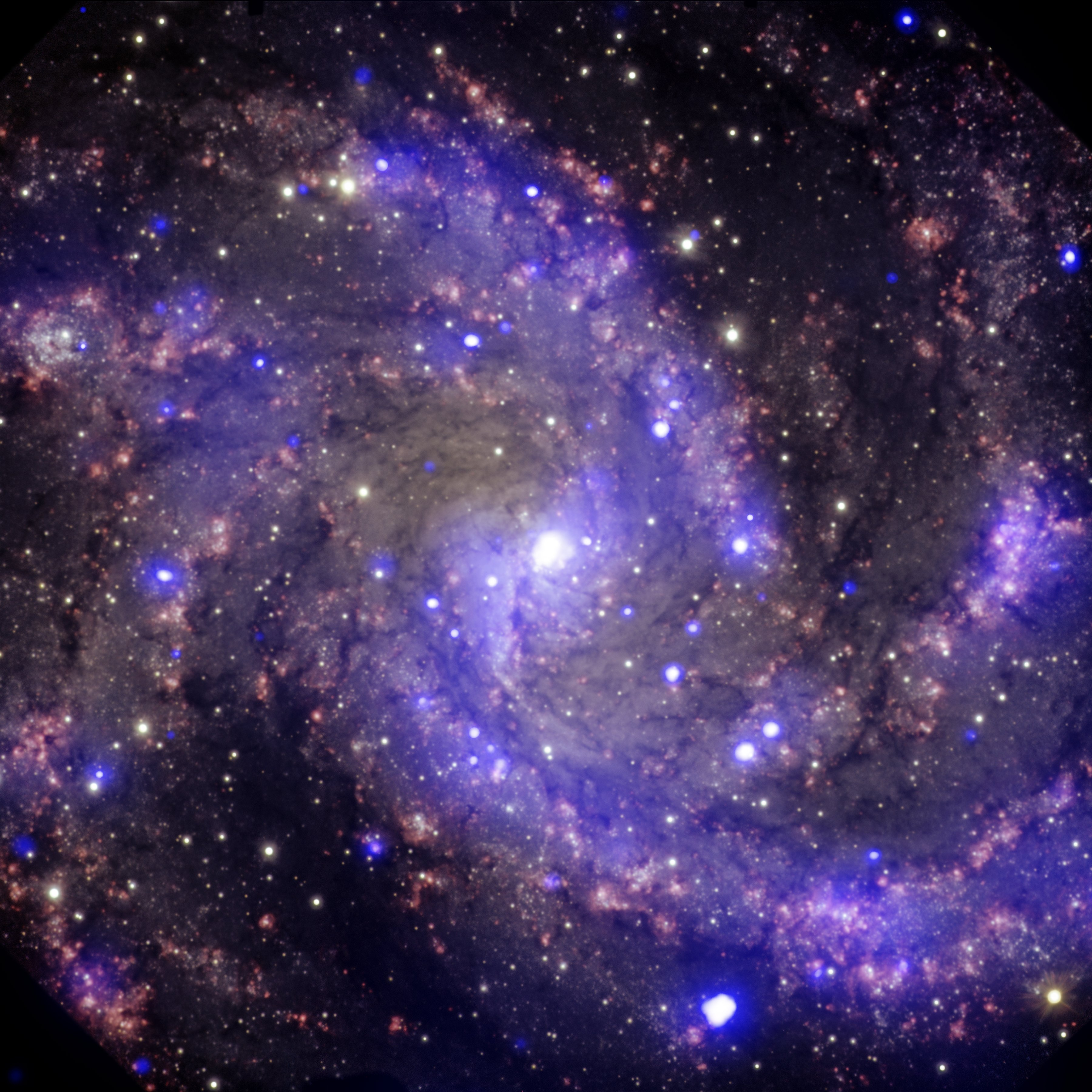 NGC 6946: The 'Fireworks Galaxy'