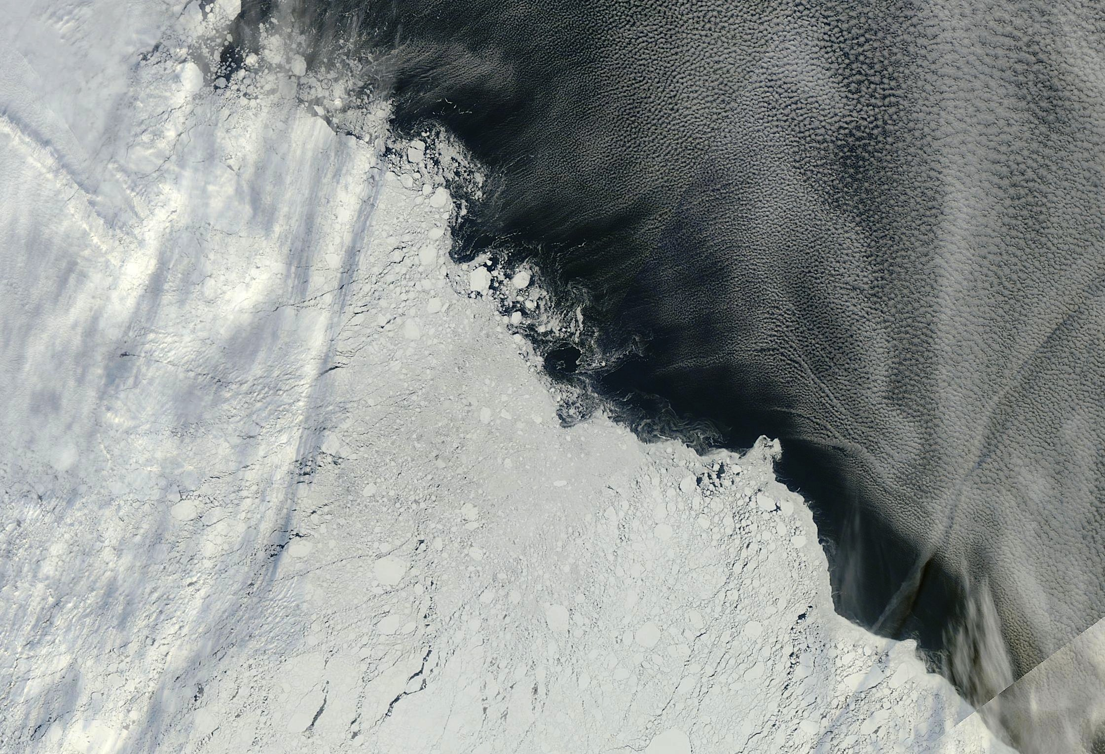 An area of the Arctic sea ice pack roughly northeast of the New Siberian Islands, captured by multiple orbits of the MODIS instrument on NASA's Terra satellite on Sept. 13, 2013. Sea ice dominates the lower left half of the image; open ocean and cloud formations can be seen in the upper right. Image Credit: Image courtesy NASA Worldview
