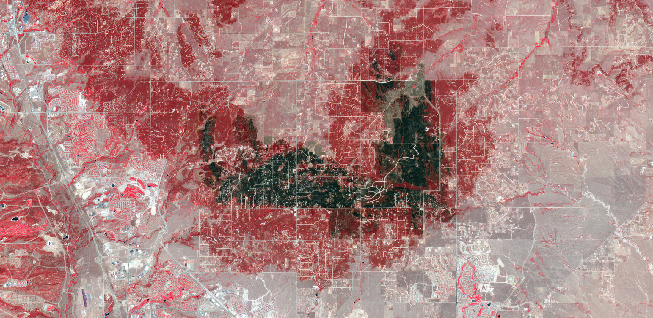 False-color image of the Black Forest burn scar from NASA's Terra satellite, June 21, 2013. The darkest gray and black areas are the most severely burned. Unburned forest patches are bright red. Unburned grasslands are pink. Buildings, roads, and other developed areas are light gray or white. Image Credit: NASA's Earth Observatory More from NASA's Earth Observatory