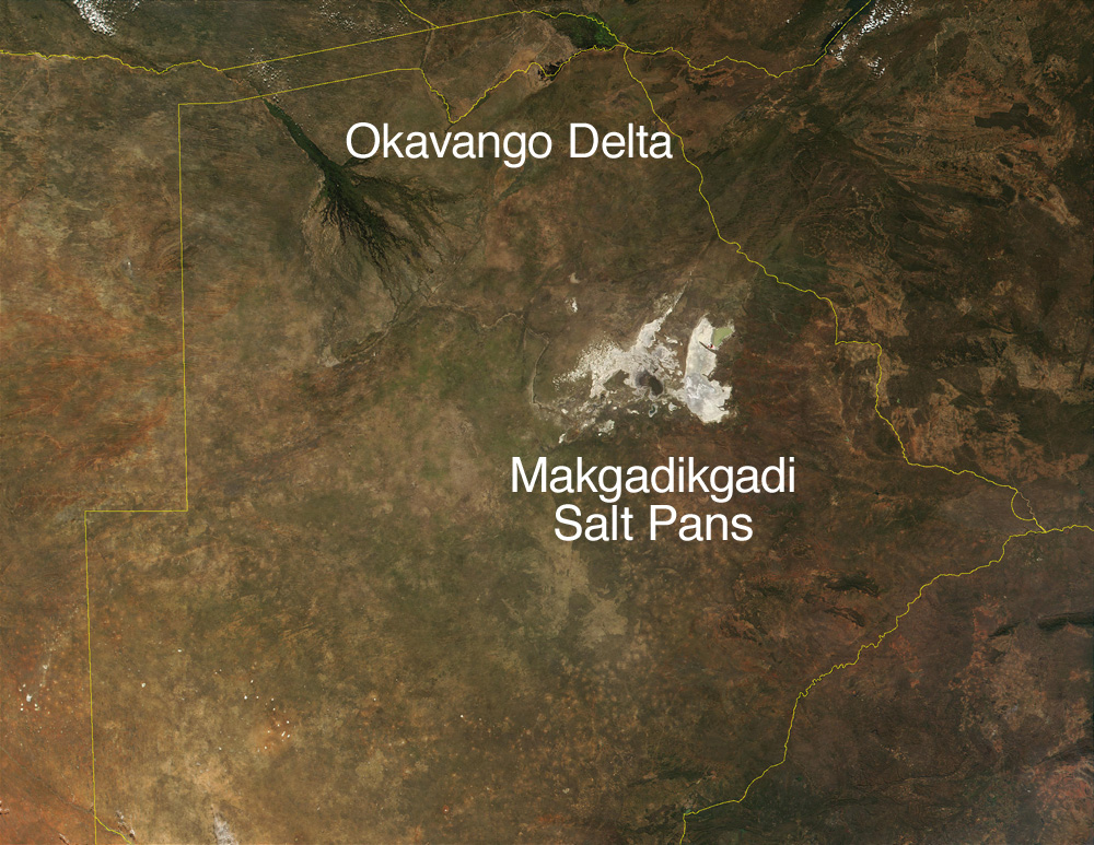 Satellite image of Botswana's Okavango Delta and Makgadikgadi Salt Pans. Image Credit: Terra MODIS/ NASA
