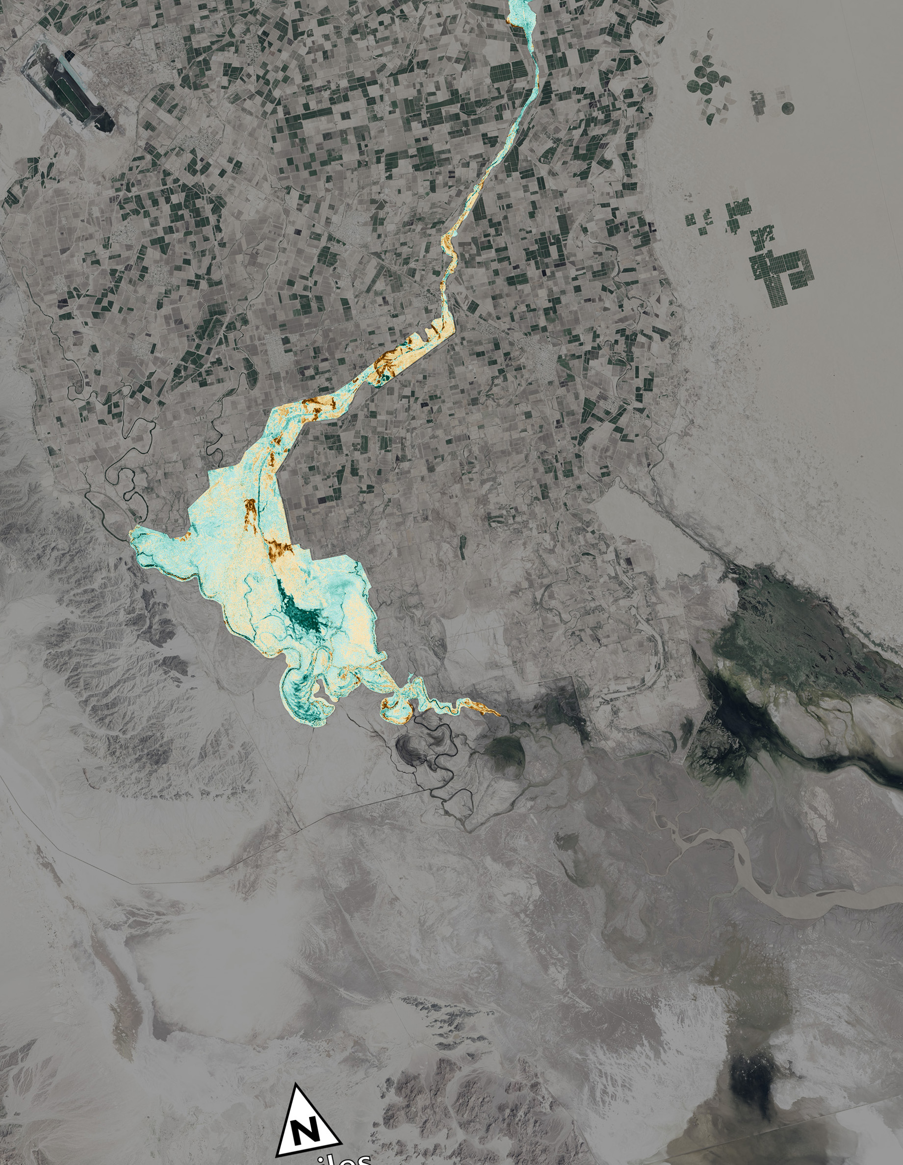 Satellite Sees Greenup Along Colo Rivers Delta NASA