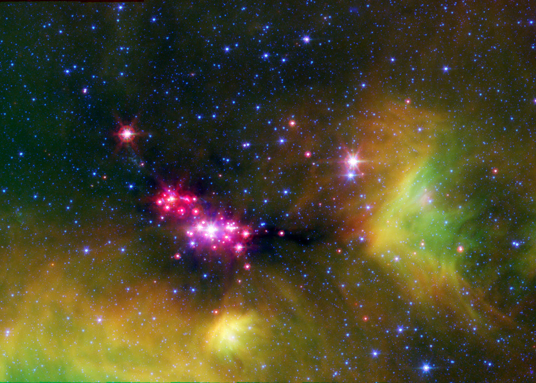 Stellar Babies   NASA