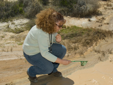 Kathy Loetzerich, environmental resource specialist for Edwards Air Force Base contractor JT3/CH2M Hill, looks for shrimp off of Lancaster Boulevard on base.