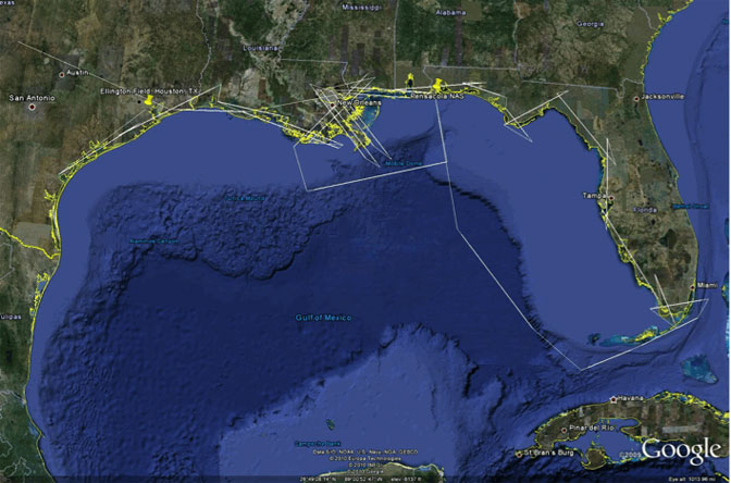 The white lines on the above Google Earth view of the Gulf of Mexico oil spill area show the planned flight tracks for the radar imaging flights this week by NASA's G-III research aircraft.