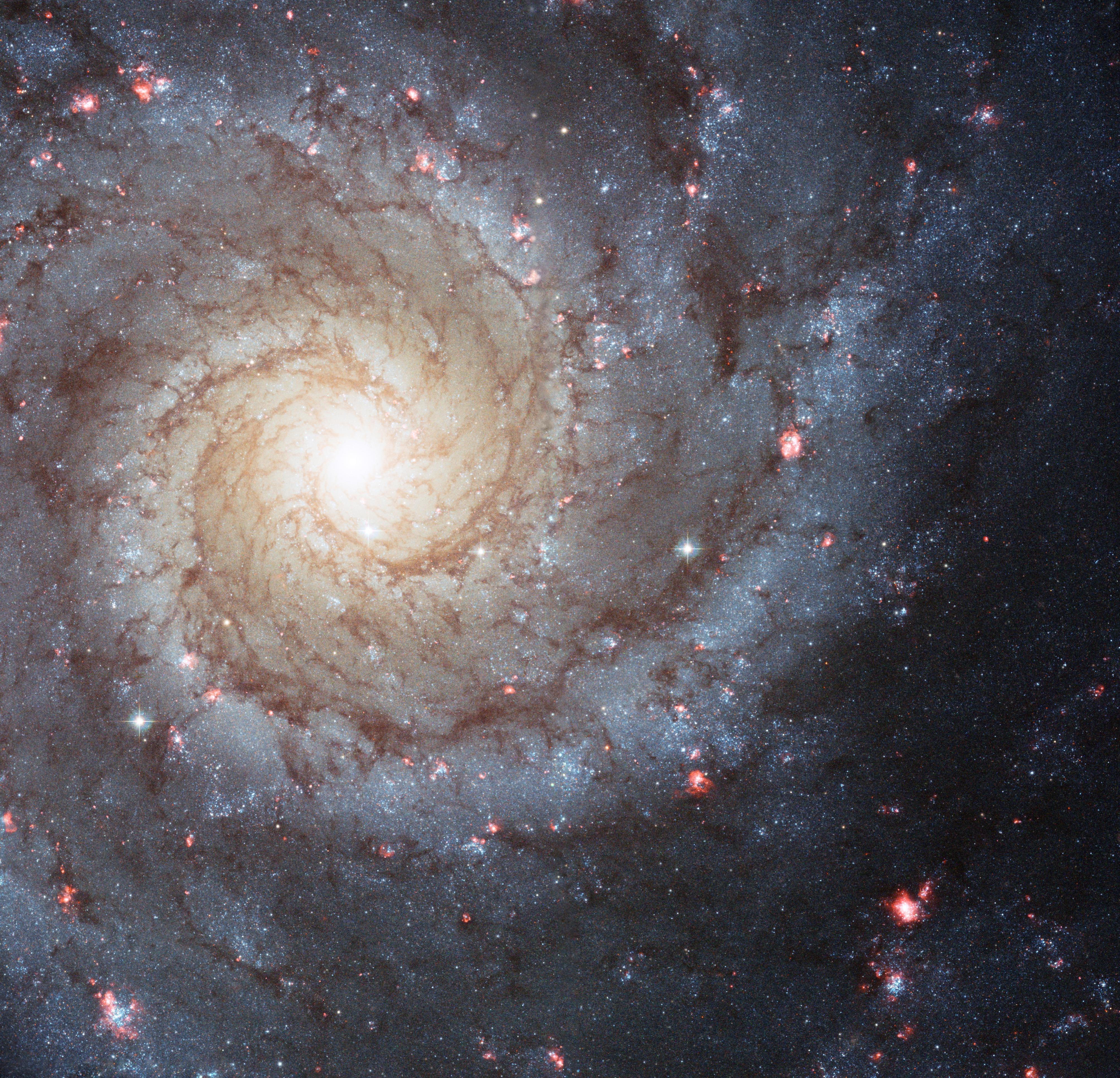 Spiral Galaxy | NASA