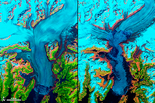 This image shows the Columbia Glacier in Alaska one of many vanishing around the world.