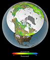 Of the 10 million square miles of northern vegetated lands, 34 to 41 percent showed increases in plant growth, 3 to 5 percent showed decreases in plant growth, and 51 to 62 percent showed no changes over the past 30 years. Credit: NASA's Goddard Space Flight Center Scientific Visualization Studio