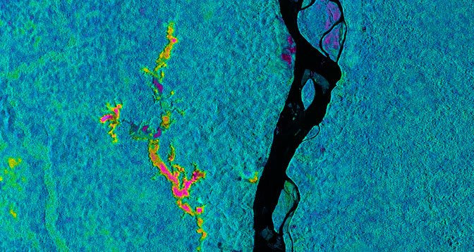 This false-color image created from data obtained by NASA's Uninhabited Aerial Vehicle Synthetic Aperture Radar (UAVSAR) over the Napo River in Ecuador and Peru on March 17 indicates the likelihood of flooding beneath the forest canopy.