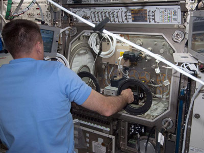 NASA astronaut Chris Cassidy conducts a session of the Burning and Suppression of Solids (BASS) investigation aboard the International Space Station.