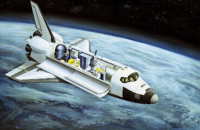 This illustration depicts the configuration of the Spacelab-2 in the cargo bay of the orbiter.