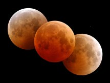 Collage of multiple phases of lunar eclipse