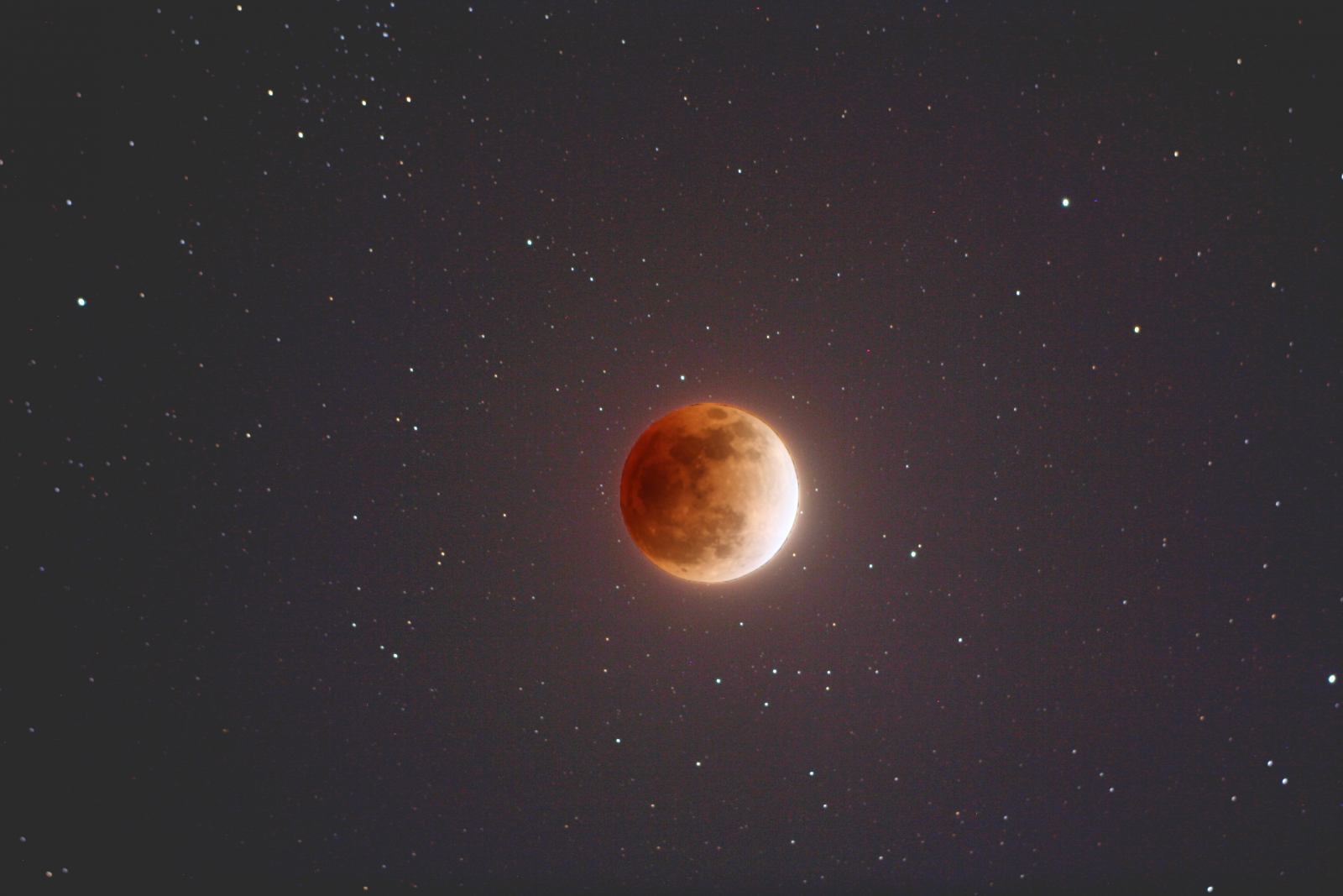 The totally eclipsed moon, as seen from just outside of Tokyo, Japan (Alphonse Sterling)