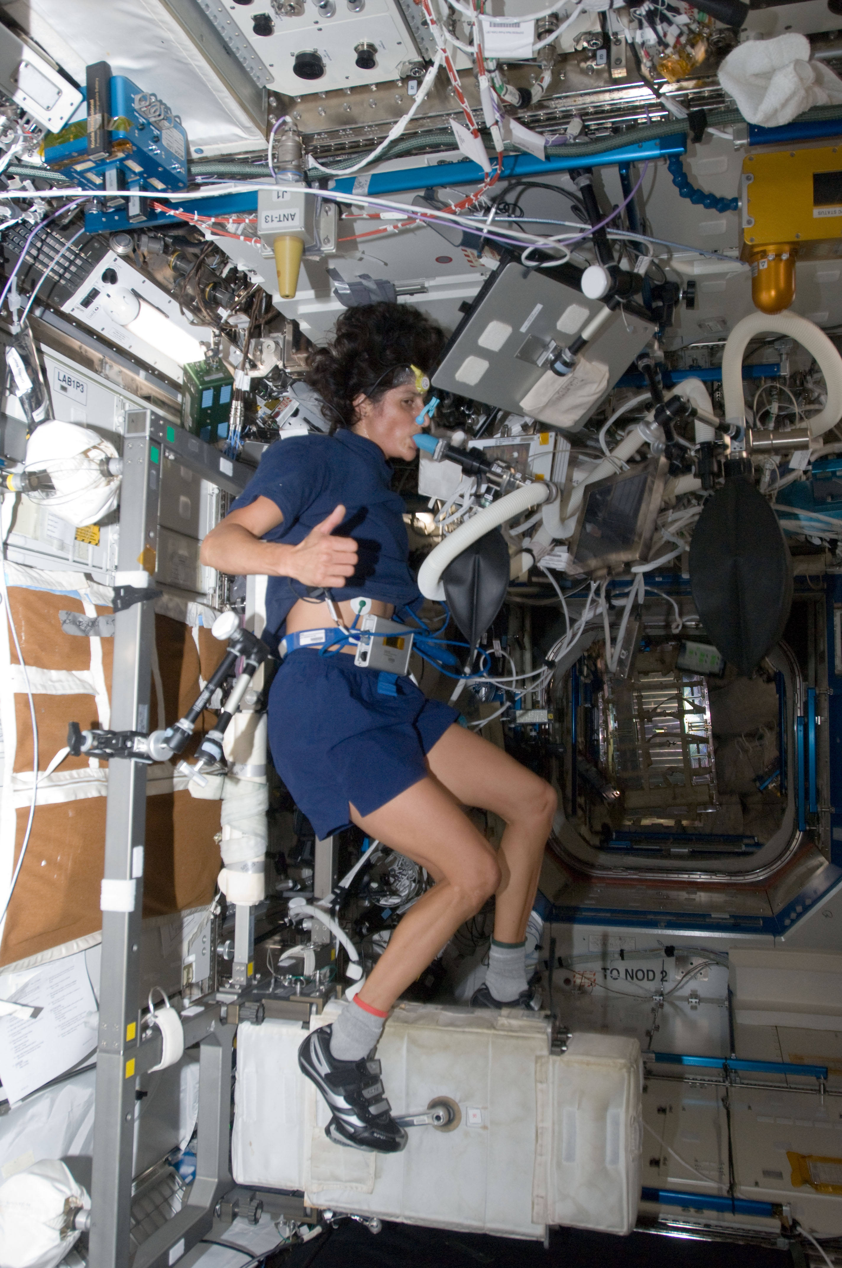 NASA astronaut Sunita Williams, Expedition 32 flight engineer, performs a VO2max test while using the Cycle Ergometer with Vibration Isolation System (CEVIS) in the Destiny laboratory.