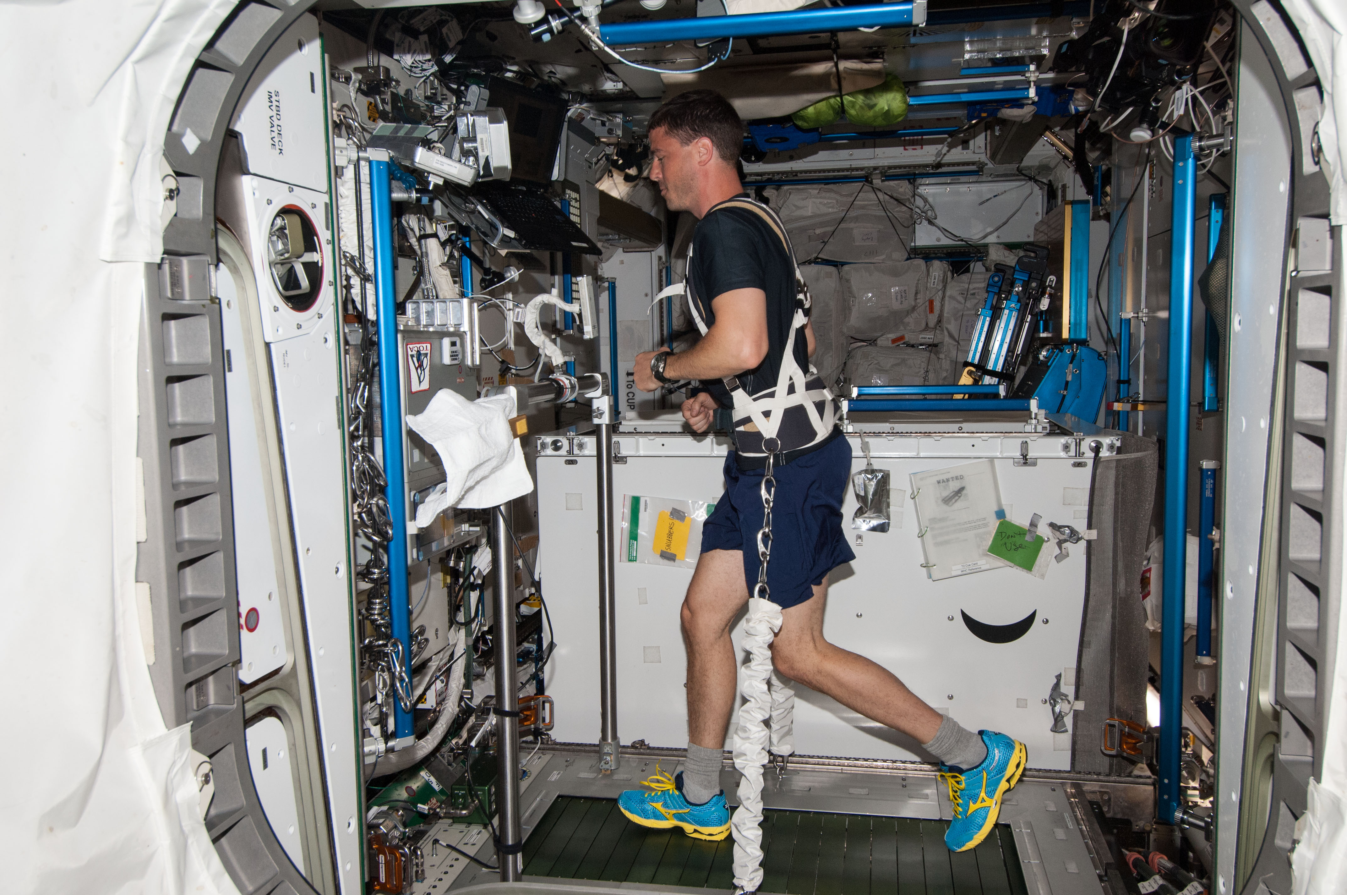 how astronauts exercise in space - photo #23