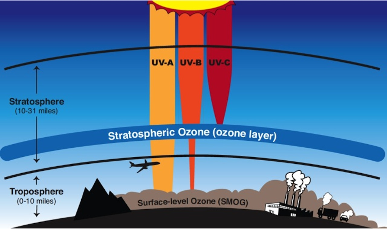 a description of the ozone depletion and its consequences