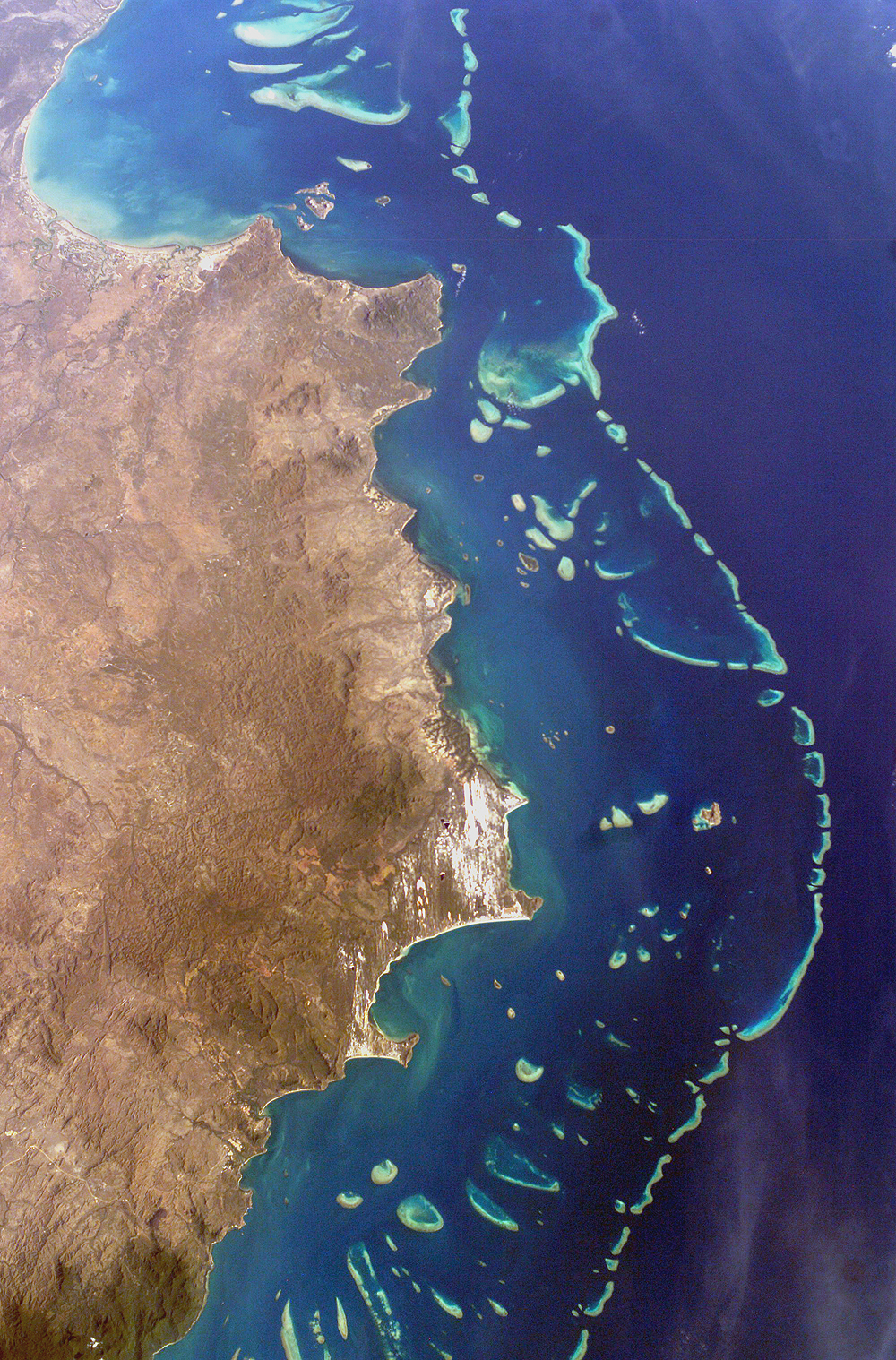 RIP to the Great Barrier Reef, you will be missed [1000x1518]