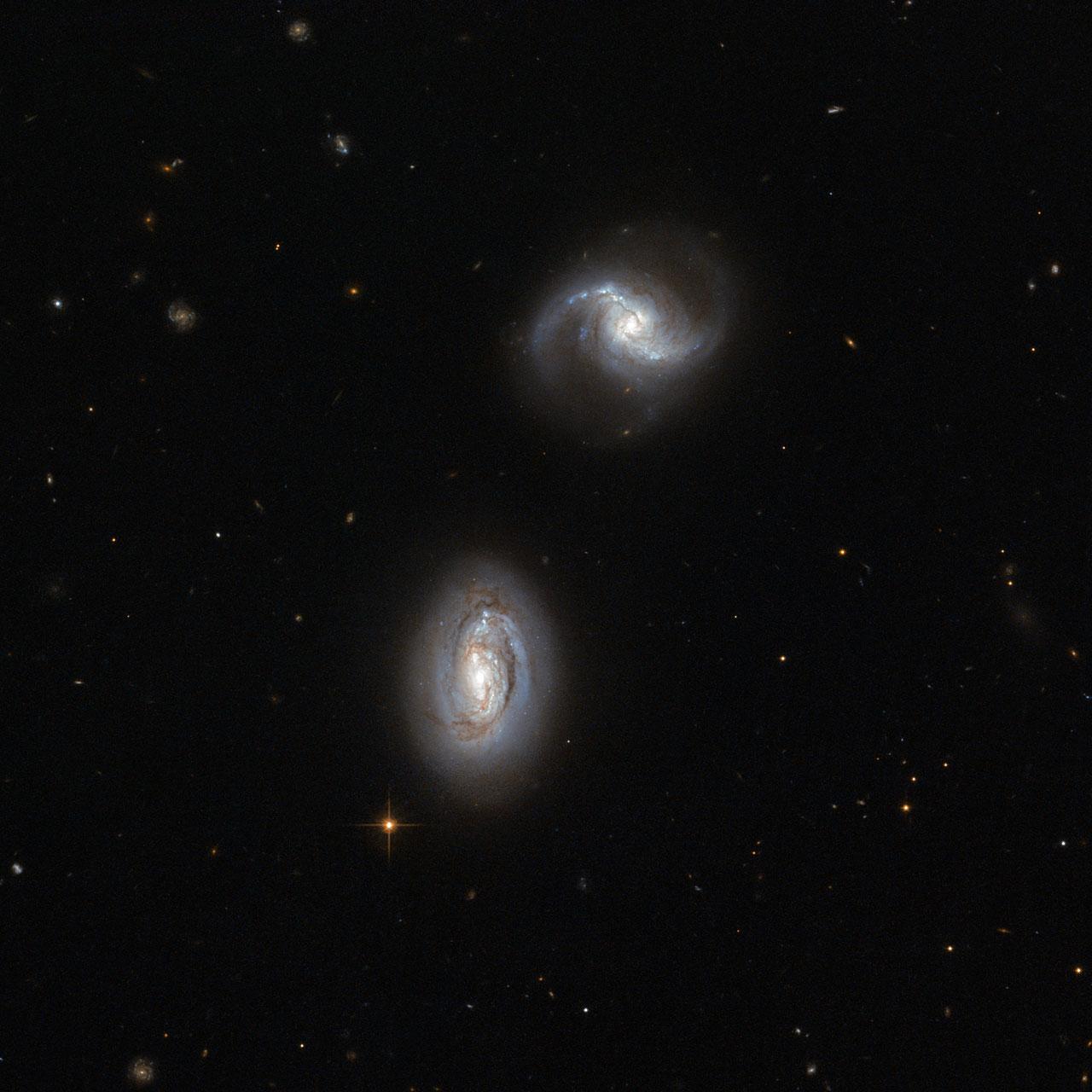 ฝาแฝด Galactic แยกออกไม่ได้