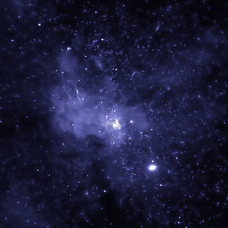 Black Hole Bounty Captured in the Center of the Milky Way