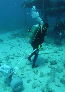 A NEEMO Aquanaut tests sample collection tools in the reduced gravity underwater environment.