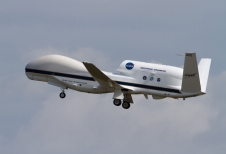 global hawk on gray sky