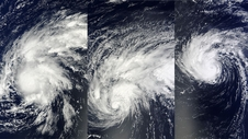 MODIS images of Edouard