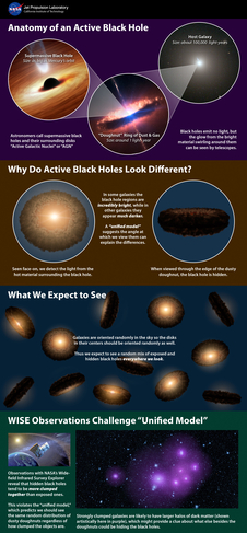 Anatomy of an active black hole infographic