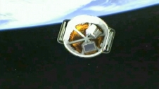 Dragon separates from second stage.