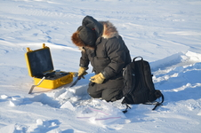 Matthew Sturm of the University of Alaska Fairbanks takes a snow measurement