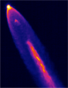 Thermal imagery of the Space X Falcon 9 first stage performing propulsive descent Sept. 21. Supersonic retropropulsion data obtained from this flight test is being analyzed by NASA to design future Mars landing systems.