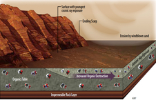 This illustration portrays some of the reasons why finding organic chemicals on Mars is challenging
