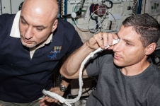 NASA astronaut Michael Hopkins performs ultrasound eye imaging in the Columbus laboratory of the International Space Station. European Space Agency astronaut Luca Parmitano assists Hopkins.