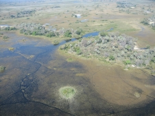 : The Okavango Delta in Botswana.