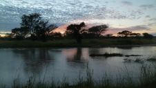 Sunrise along the river within North Luangwa National Park.