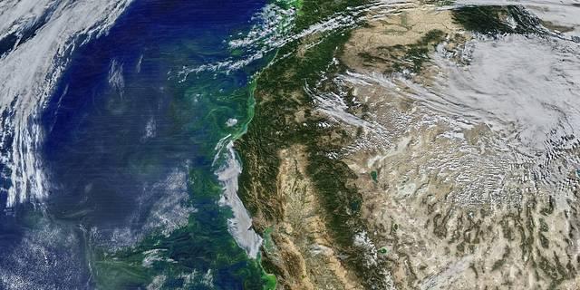Image from MODIS instrument on NASA Aqua satellite showing phytoplankton along the U.S. West Coast