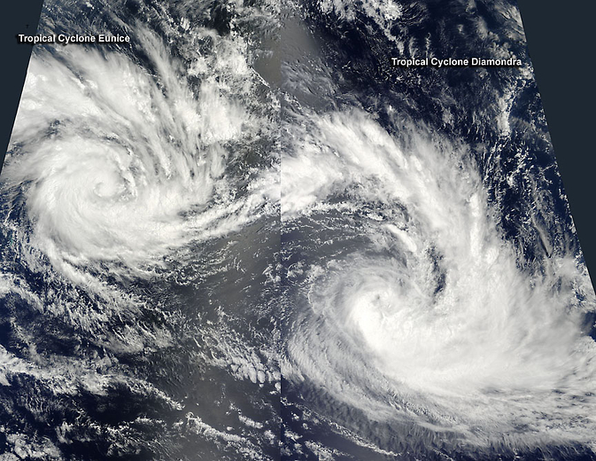 Diamondra and Eunice in the Southern Indian Ocean