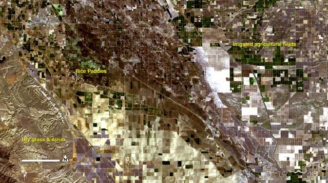 Aktivitas Evapotranspirasi citra satelit landsat 2