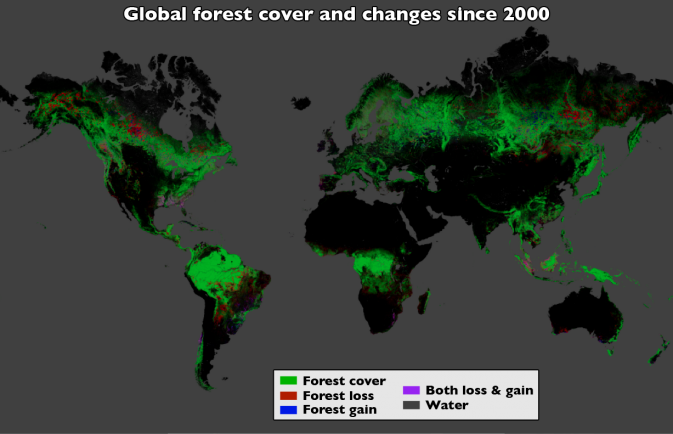 map of global forest cover and changes since 2000