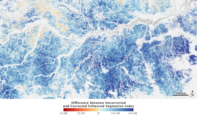 image of southern Amazon, color-coded to show areas where satellites can overestimate vegetation green-up